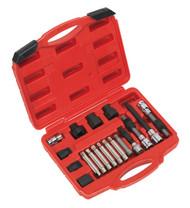 Sealey SX402 Alternator Freewheel Pulley Removal Set 18pc