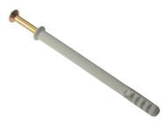 Forgefix FORFF10160M - Frame Fixing & Plug M10 x 160mm Bag 10