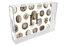 Sand Dollars Personalized Lucite Tray