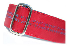 Sailcloth Dog Collar in Salty Port Red