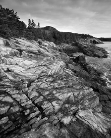 Rugged Shore, Acadia National Park
