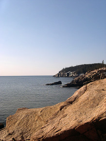 Bare  Acadia National Park