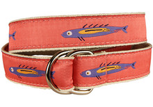 Fish Ribbon Belt on Coral