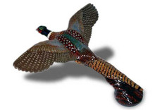 Pheasant Flying Hood Ornament