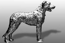 Irish Wolfhound Hood Ornament