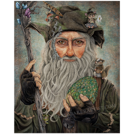 Radagast Teaches at a Magical School