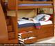 Allen House Brandon Twin over Full Bunk Bed Espresso   Allen House   AH-J-TF-06