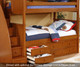 Allen House Brandon Twin over Full Bunk Bed with Stairs Espresso   Allen House   AH-J-TF-06-STR-T-J