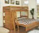 Ridgeline Honey Twin over Full Loft Bed | Discovery World Furniture | DWF2105
