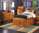 Ridgeline Twin Size  Bookcase Captains Bed   Discovery World Furniture   DWF2120-CL