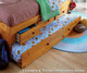 Honey Full Size Bookcase Captain's Day Bed | Discovery World Furniture | DWF2123