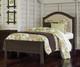 Everglades Bailey Upholstered Bed Twin Size Espresso | NE Kids Furniture | NE11010