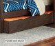 Everglades Bailey Upholstered Bed Twin Size with Trundle Espresso | NE Kids Furniture | NE11010X