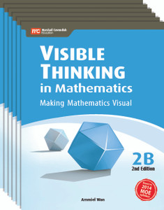 Visible Thinking in Mathematics Grade 2B (6 Pack)