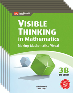 Visible Thinking in Mathematics Grade 3B (6 Pack)