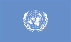 United Nations - 3'x5' Outdoor Nylon Flag