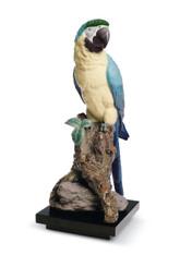 LLADRO MACAW BIRD (01008388 / 8388)