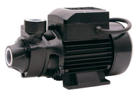 SIP 07614 450W Surface Water Pump