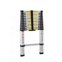 ProTool 13 Rung Aluminium Telescopic Ladder (3.8 Metre) (PTLD1138)