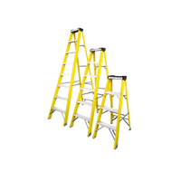 Power Professional 4 Thread Fibreglass Ladder