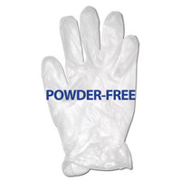Glove, Vinyl Powder-Free, Large