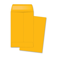 Coin Envelope, 500pk