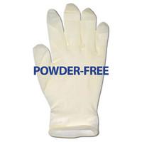 Glove, Latex Powder-Free, Extra Large