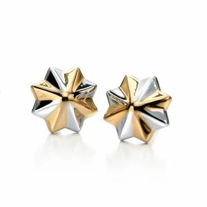 Fiorelli Ladies Silver Two Tone Star Studs Earring