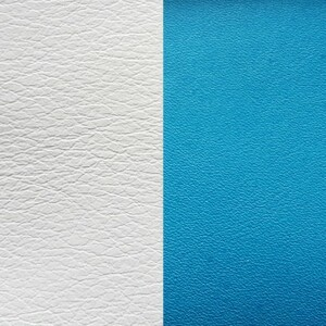 Les Georgettes Leather Insert Medium Size in White and Turquoise Blue
