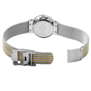 Skagen Replacement Watch Strap Two-Tone Mesh For 355SSGS With Screws