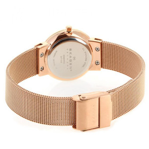 Skagen Watch Replacement Bracelet Rose Gold Mesh For 358SRRD With Free Connecting Screws