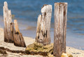 Boca Chica Beach Pilings Photo Print
