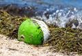 Beached Ball