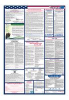 Nevada Total Labor Law Poster