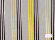 Black Edition - Caselio Acacia  | Curtain Fabric - Gold, Yellow, Grey, Stripe, Eclectic, Dry Clean, Silk Fabric, Natural, Natural Fibre