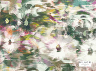 Black Edition - Kansai Wallcovering Zinnia  | Wallpaper, Wallcovering - Blue, Contemporary, Floral, Garden, Ikat, Pink, Purple, Turquoise, Teal, Abstract, Domestic Use, Print