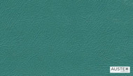 Austex Studio Encore Cactus    Upholstery Fabric - Plain, Contemporary, Synthetic, Commercial Use, Standard Width