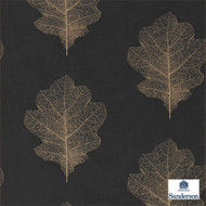 Sanderson Oak Filigree 215700  | Wallpaper, Wallcovering - Black - Charcoal, Floral, Garden, Midcentury, Domestic Use