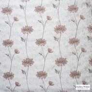 Ashley Wilde - Ashton - Nedla Shell  | Curtain Fabric - Grey, Contemporary, Floral, Garden, Botantical, Silver, Velvets, Standard Width