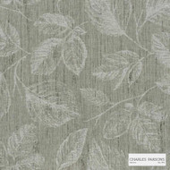 Charles Parsons Interiors - Daintree Bark  | Curtain Fabric - Floral, Garden, Uncoated, Weave, Commercial Use, Jacquards