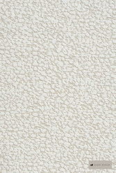 James Dunlop Reveal - Oasis  | Upholstery Fabric - Stain Repellent, Whites, Plain, Shagreen, Texture, Standard Width