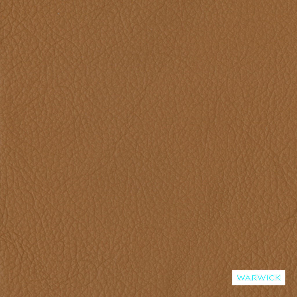 Warwick Tm La Casa - Bison  | Upholstery Fabric - Brown, Leather/Faux Leather, Natural, Plain, Natural Fibre, Standard Width