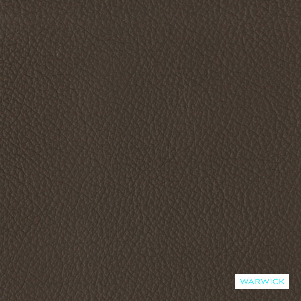 Warwick Tm La Casa - Coffee  | Upholstery Fabric - Brown, Tan, Taupe, Leather/Faux Leather, Natural, Plain, Natural Fibre, Standard Width