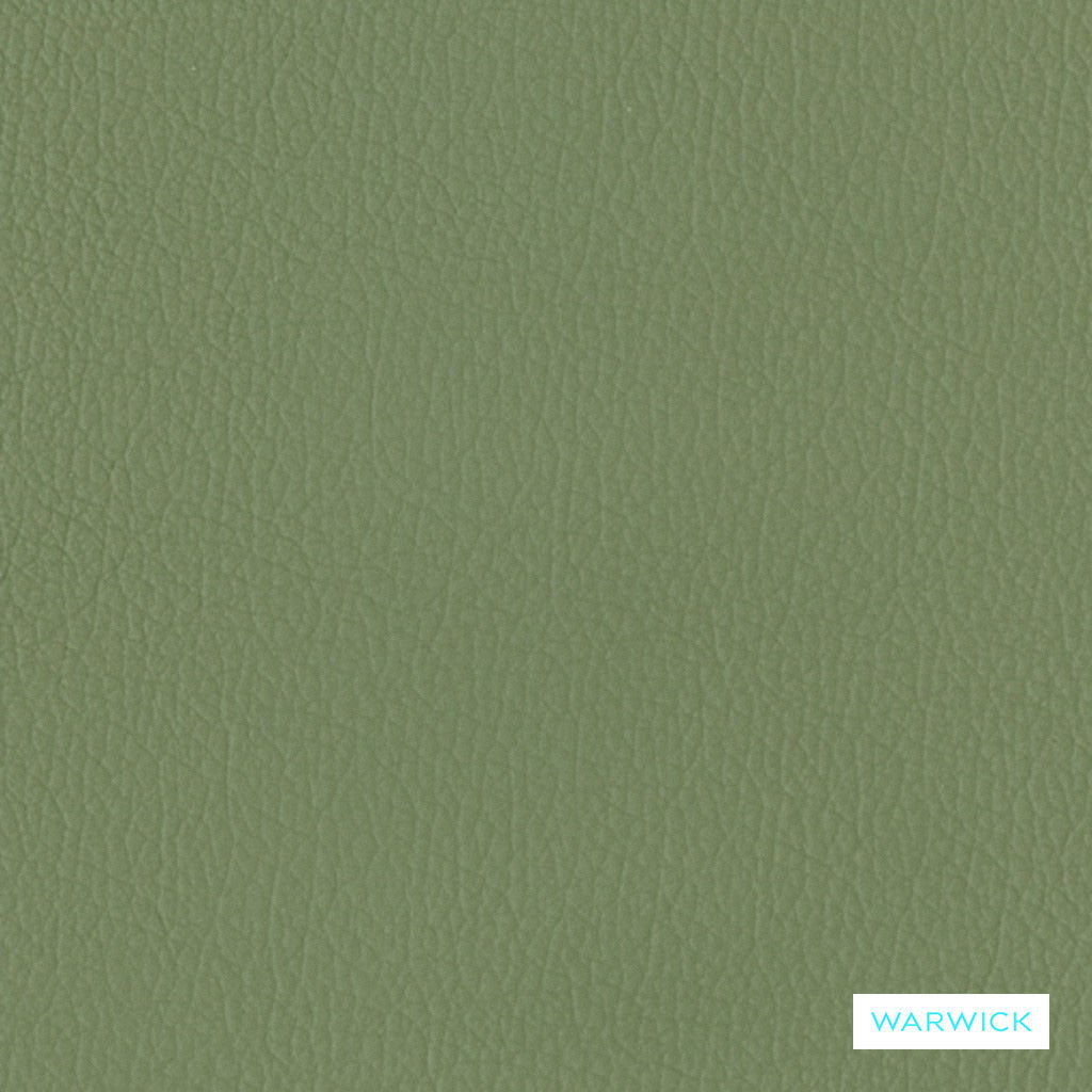 Warwick Tm La Casa - Sage  | Upholstery Fabric - Leather, Plain, Natural Fibre, Commercial Use, Natural, Standard Width