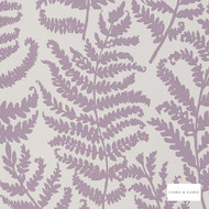 Clarke & Clarke - Wild Fern Wp Heather  | Wallpaper, Wallcovering - Pink, Purple, Floral, Garden, Botantical, Print