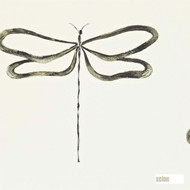 Scion Dragonfly 110247  | Wallpaper, Wallcovering - Fire Retardant, Grey, Animals, Fauna