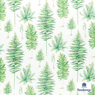 Sanderson Fernery - 226579  | Curtain & Upholstery fabric - Green, Floral, Garden, Botantical, Cushion, Natural, Natural Fibre, Standard Width