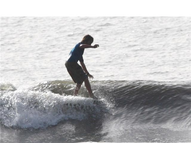surfpics2.png