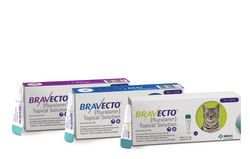 Bravecto Feline Topical Solution