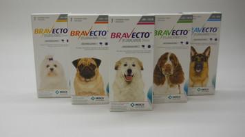 Bravecto Canine